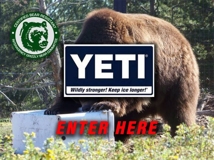 Yeti Coolers | Big Muddy Powersports Image